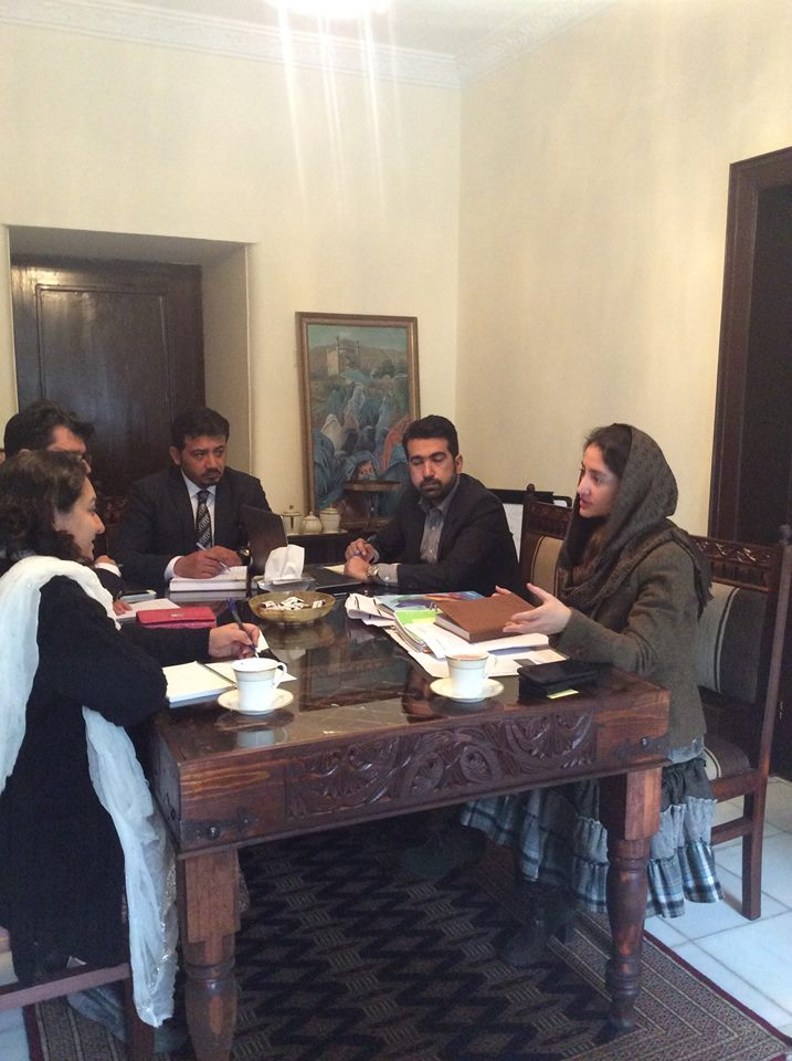 Farkhunda Zahra Naderi meeting with acting head of UN Women